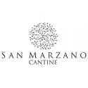 F Negroamaro Salento I.G.P - San Marzano